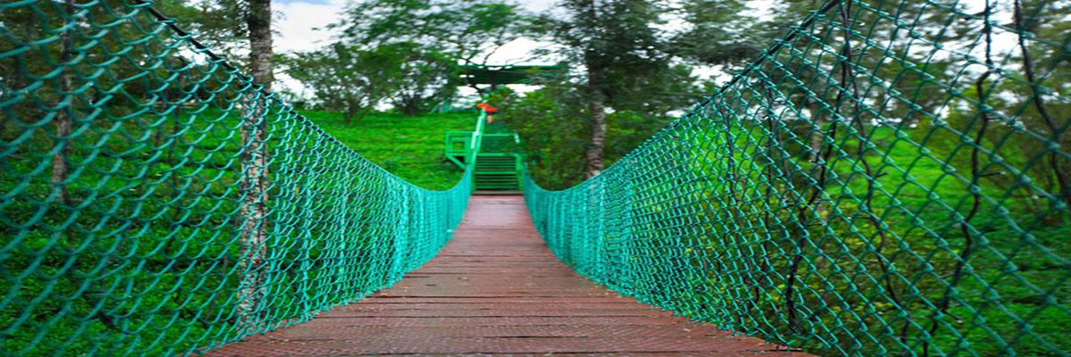 17-bridge-hanging-munnar